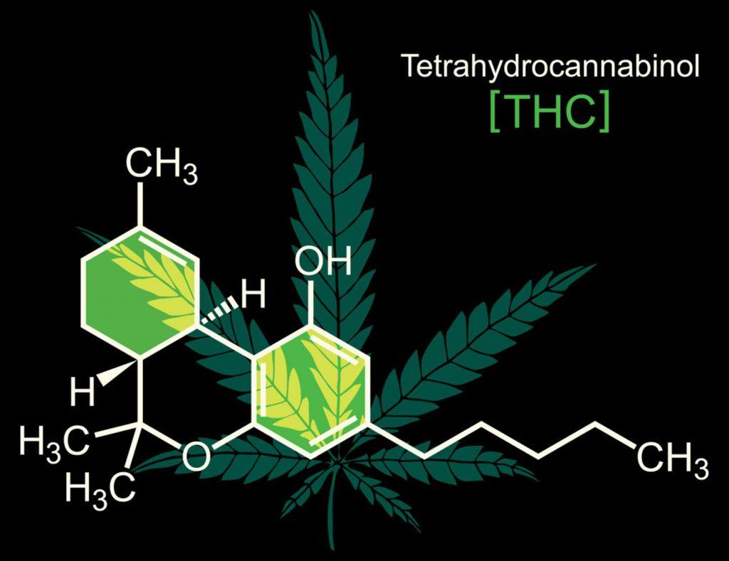 Przedawkowanie Marihuany Przez Nastolatka, Narkus