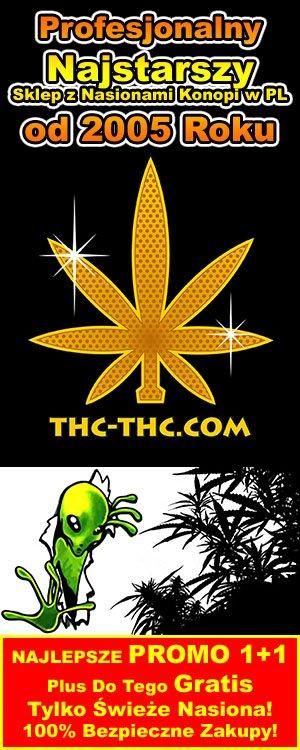 konopi, nasiona marihuany f1, thc-thc.com